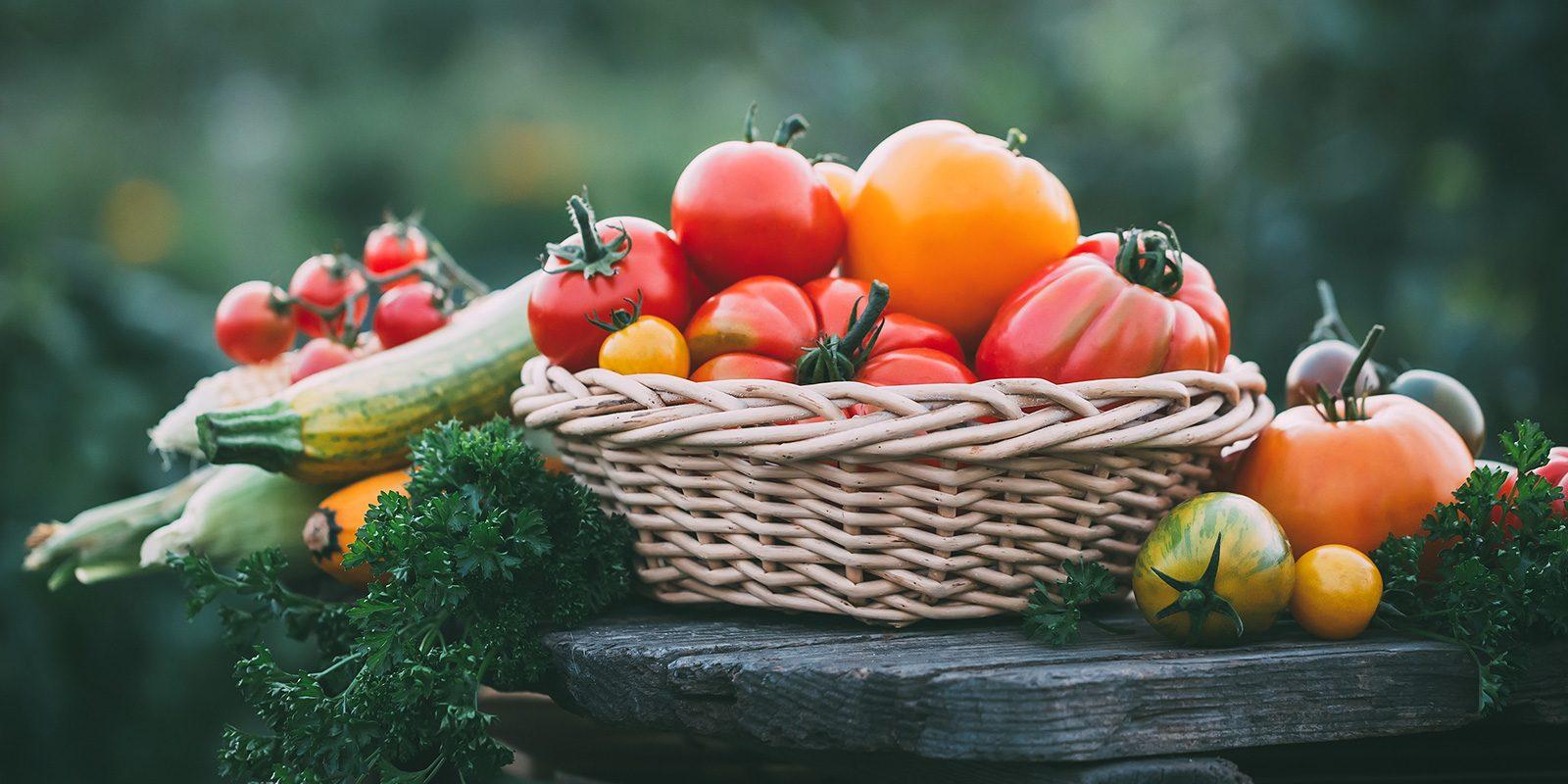 gewoon-zelfvoorzienend-leven-moestuin-tomaten-courgette